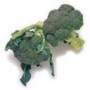 broccoli_shaded_130x130