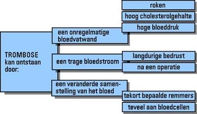 lever trombose symptomen
